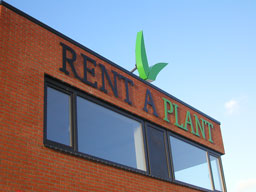 Freesletters Rent A Plant